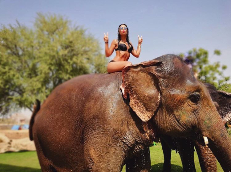 Dana Alexa on an elephant