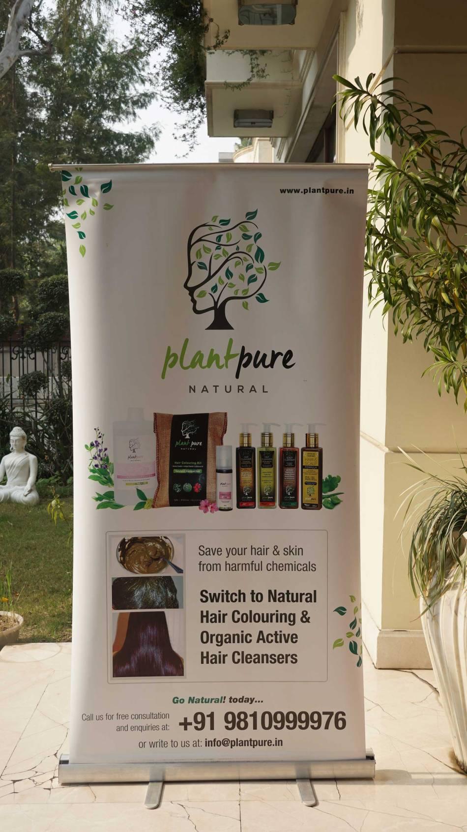 shine-your-light-plant-pure