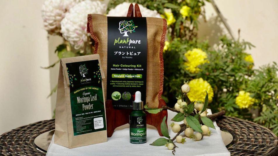 Plant pure moringa powder