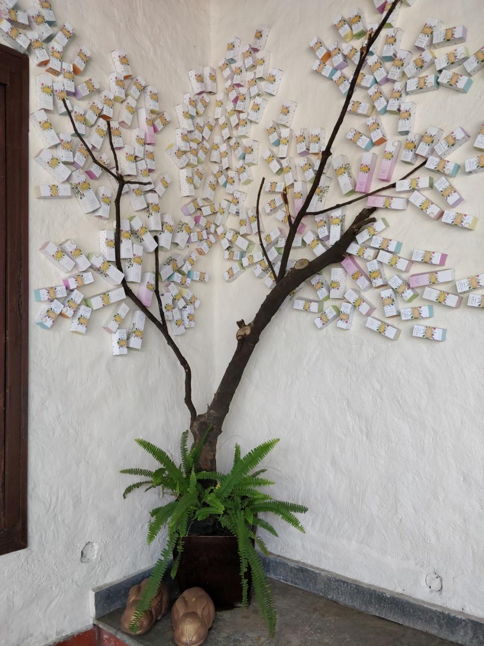 Sangeeta-Jain-Ras-Tree