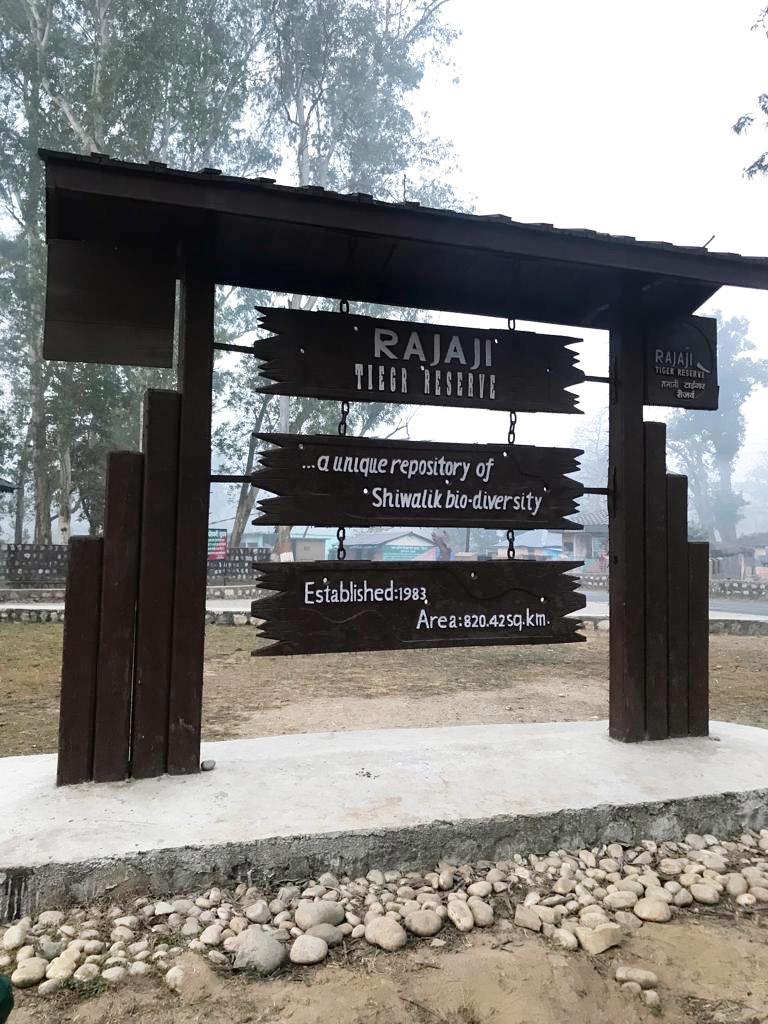 Travel---Rishikesh-tiger-reserve