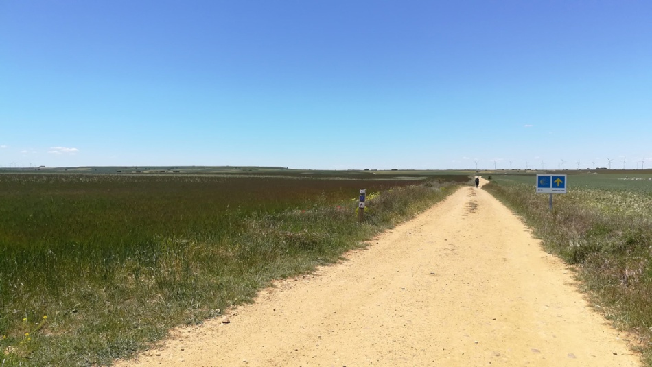 Camino-de-Santiago-2-eshe