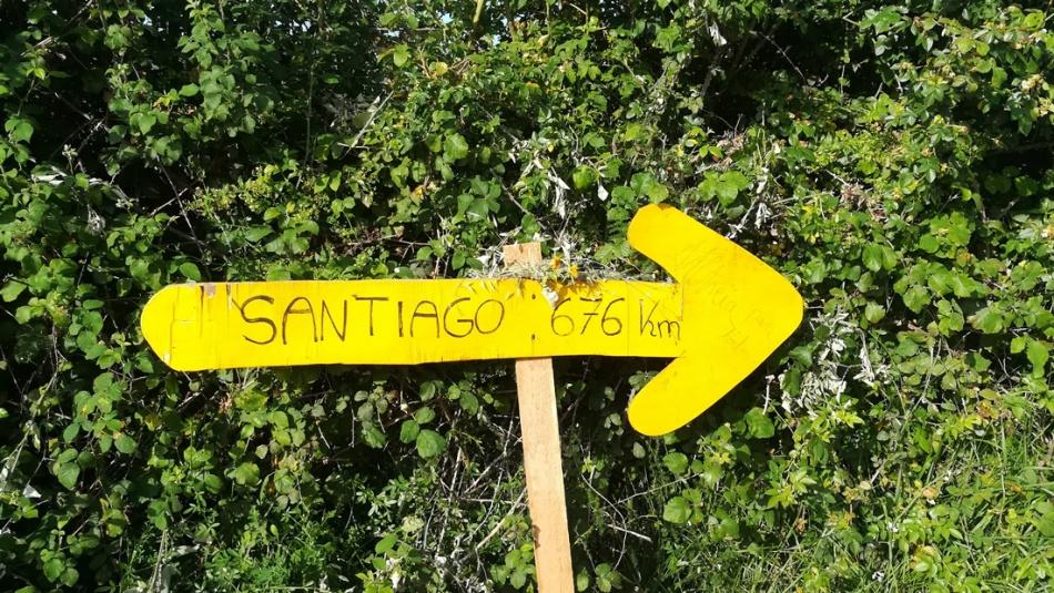 Camino-de-Santiago3