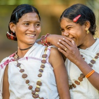 Tribal dance festival begins today in Chhattisgarh, featuring tribal artists from India and the world